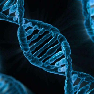close up illustration of DNA