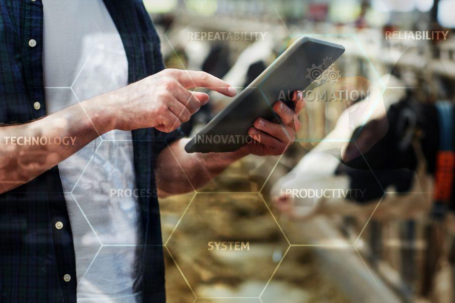 A Virtual Dairy Farm Brain