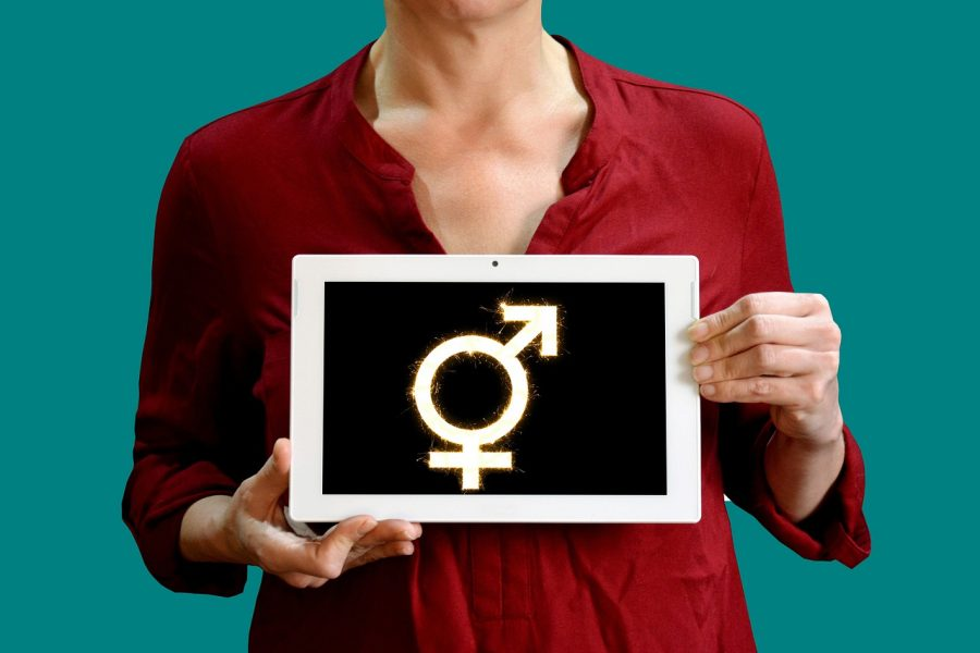 sign of male and female symbols: CREDIT: Image by Tumisu from Pixabay